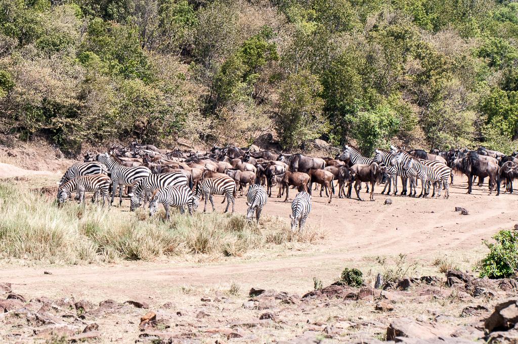 Afrika-143.jpg