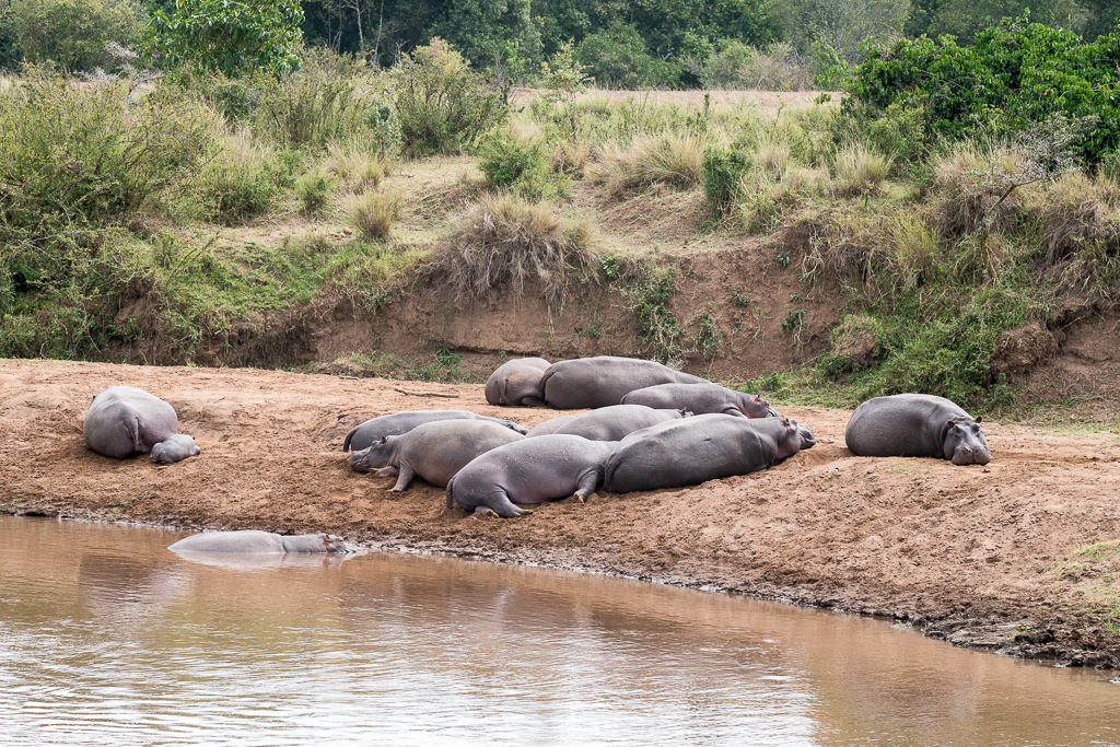 Afrika-169.jpg