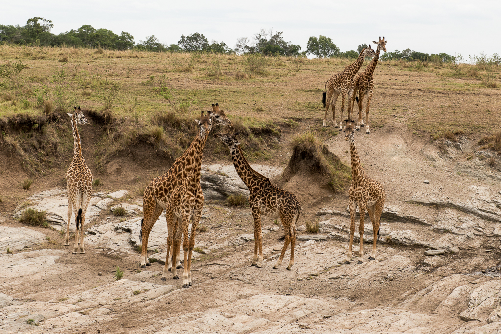 Afrika-199.jpg