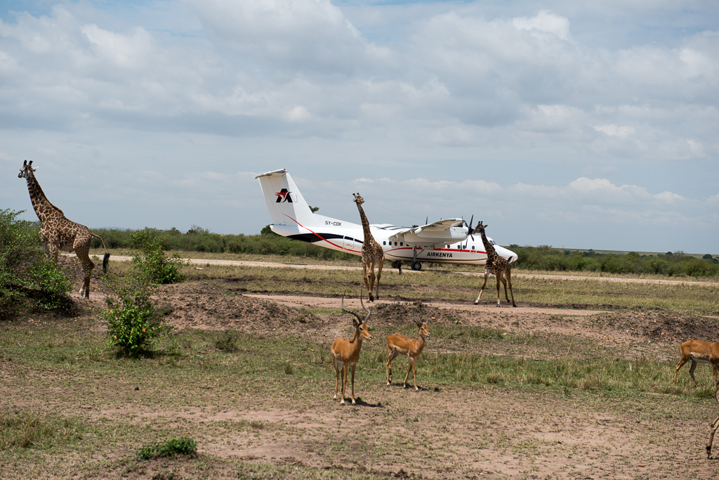 Afrika-217.jpg