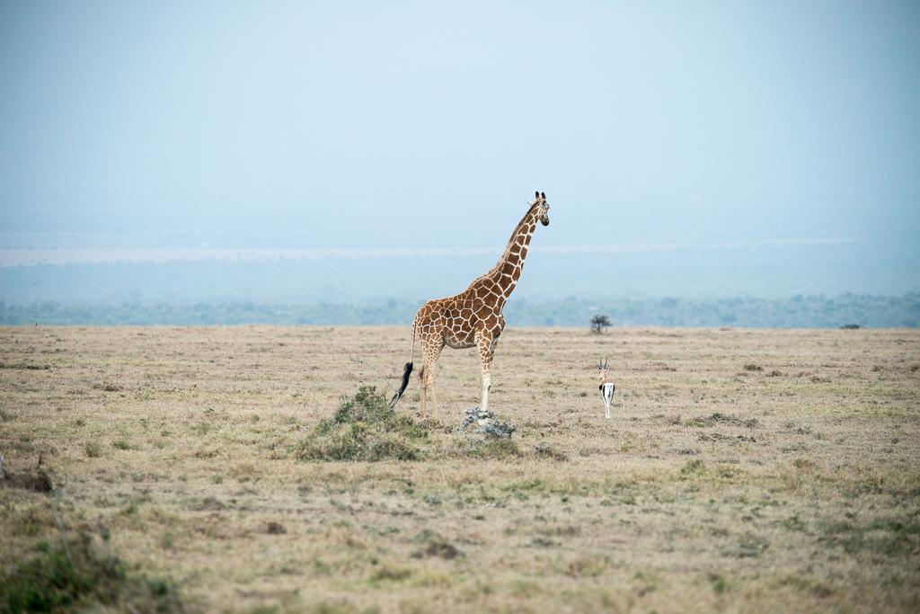 Afrika-36.jpg
