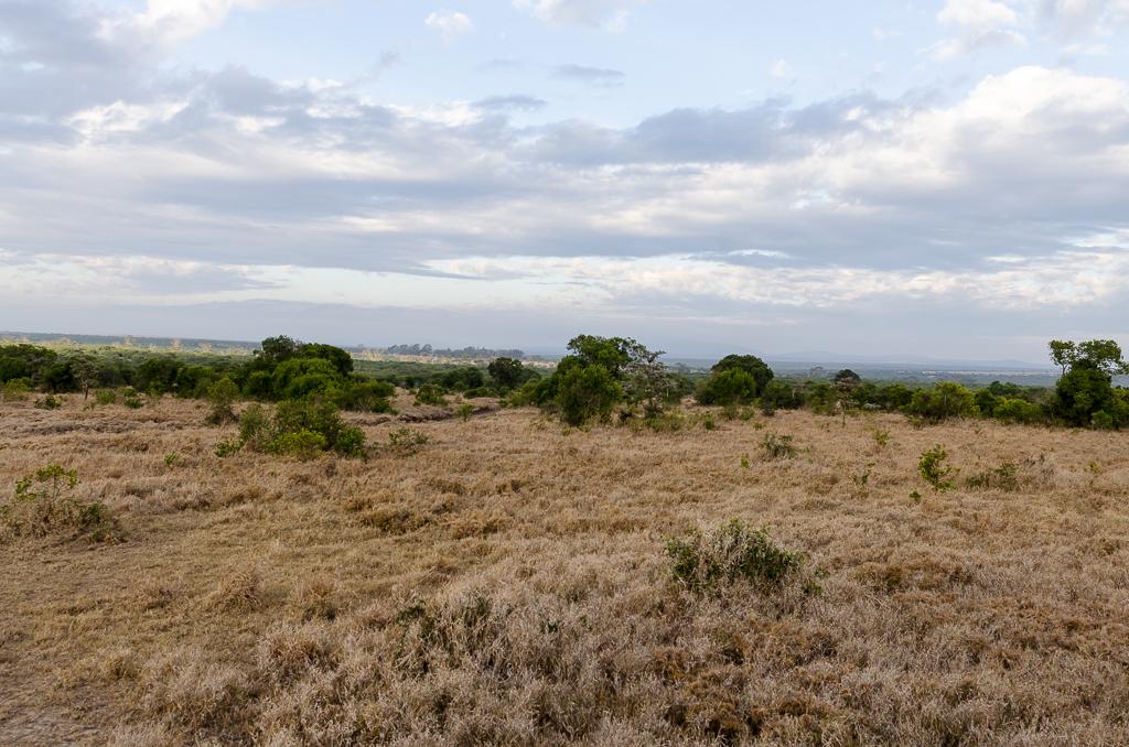 Afrika-37.jpg