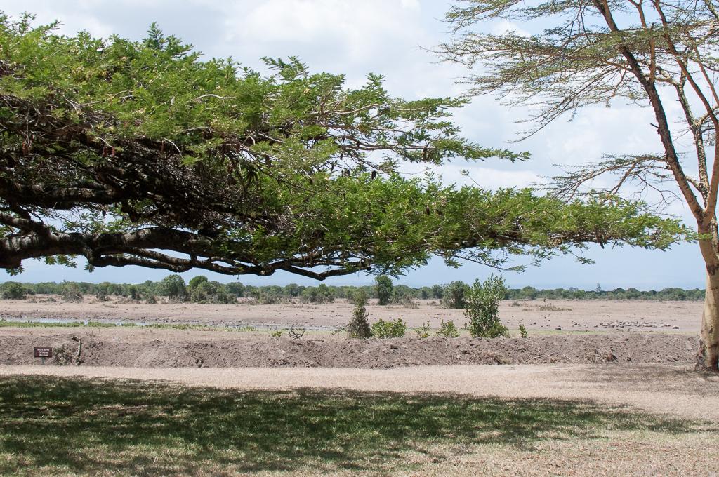 Afrika-62.jpg