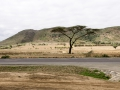 Afrika-113.jpg