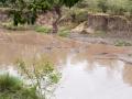 Afrika-226.jpg
